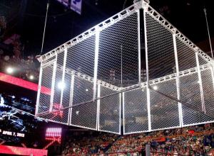 wwe steel cage