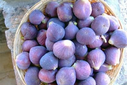 Figue fraîche d'Alsace