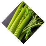 Celeri Branche Bio d'Alsace