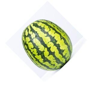 Légume Fruit Pastèque Bio d'Alsace