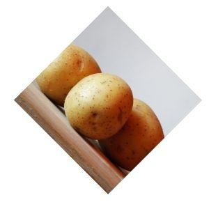 Pommes de terre charlotte Bio d'Alsace