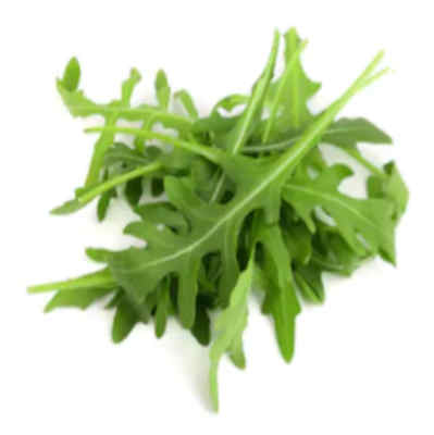 Image de la salade roquette