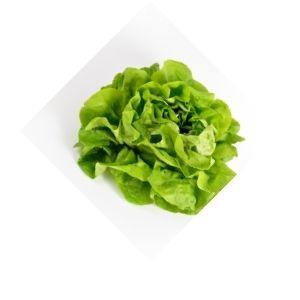 Salade mille feuilles Bio d'Alsace