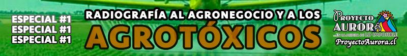 Especial Temático #1: Radriografía al Agronegocio y a los Agrotóxicos