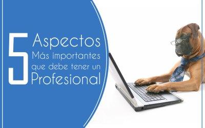 5 Aspectos Más Importantes Que Debe Tener Un Profesional