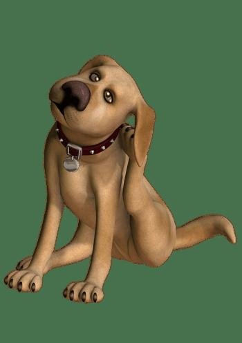 picada de paparra - gos rascant-se