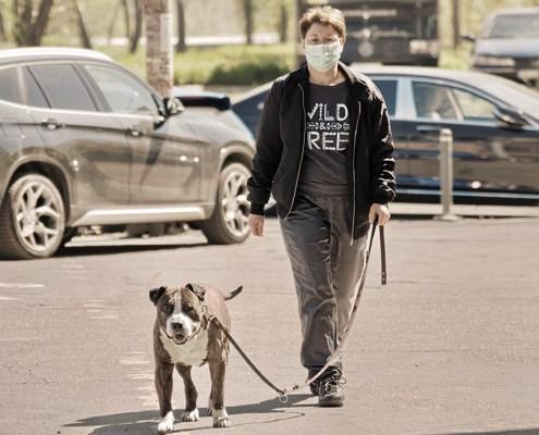 Passejar al gos en temps de pandèmia