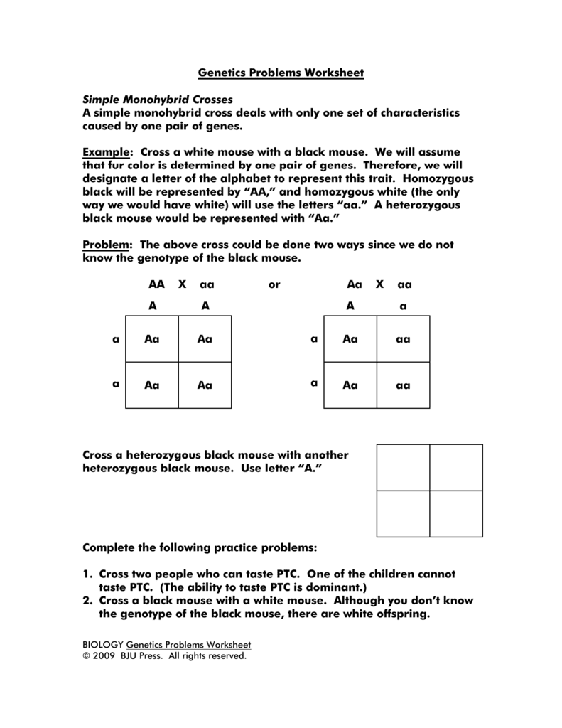 Genetics Practice Problems 4 And Non Mendelian Inheritance Worksheet Answers