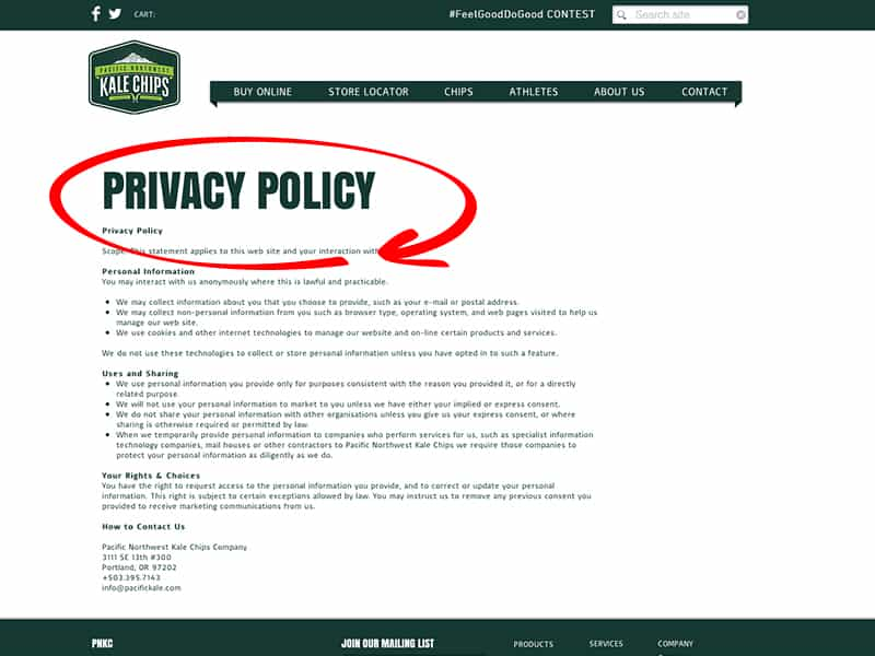 Simple Privacy Policy Example And Sample Email Privacy Statement