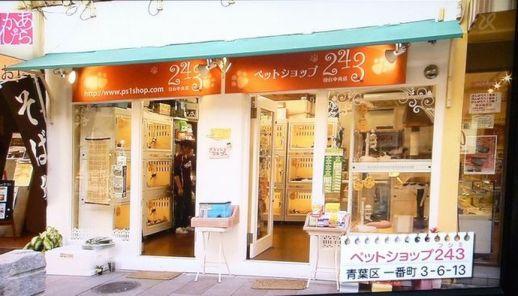 ペットショップ243仙台中央店