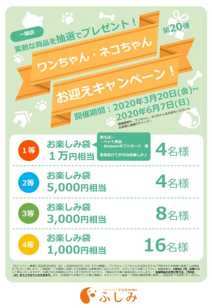 予告次回第40回イベント一関ふしみ・TVCM・第20弾 お迎えキャンペーンのご案内・一関店(ふしみ)