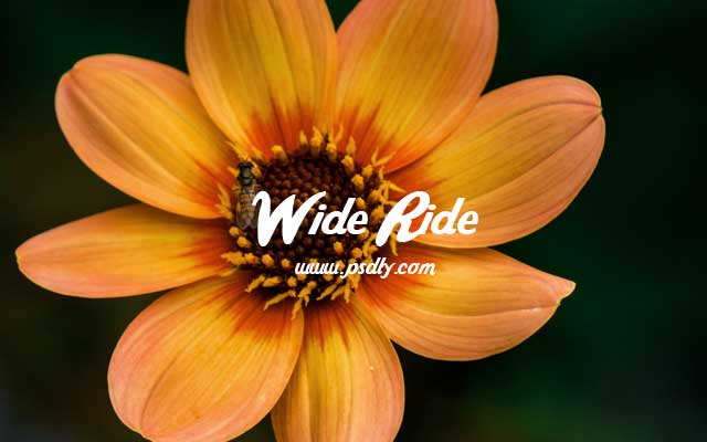 Wide Ride Font