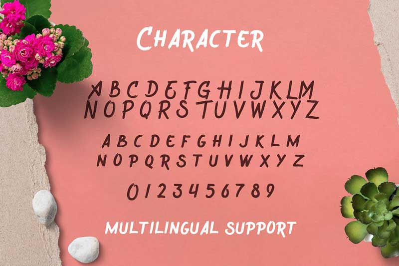 Wreckout Decorative Brush Font Download
