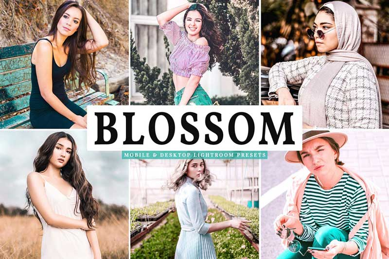 Blossom Mobile 2526 Desktop Lightroom Presets Free Download