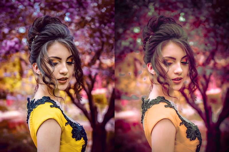 10 Lightroom CC Presets Bloom 4581788 Free