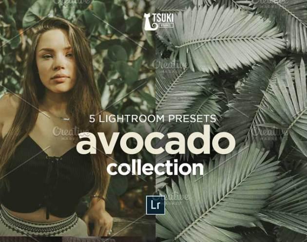 AVOCADO Lightroom Presets 4619013 Free Download