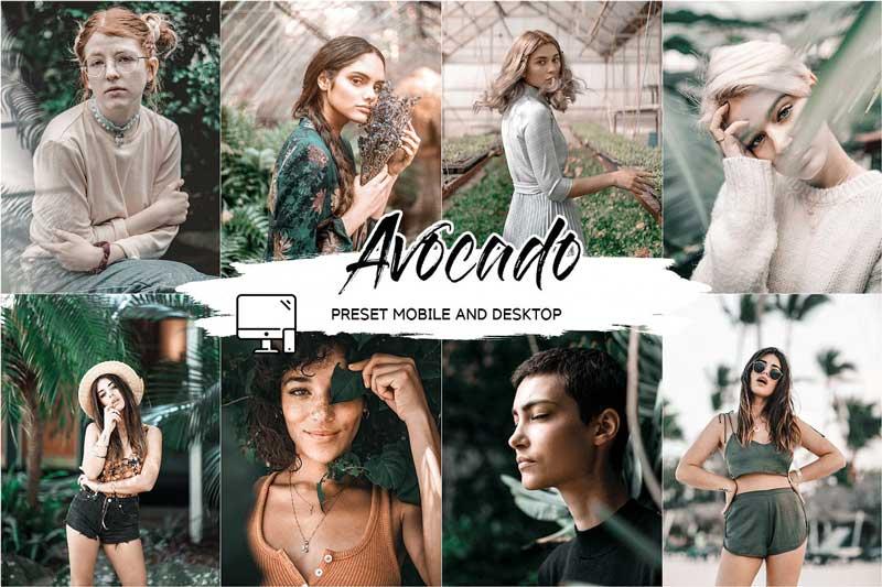 Avocado Lightroom Presets 252B Luts Free Download