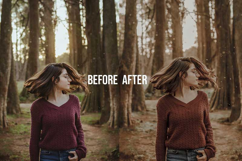 FALL Autumn Collection LR Presets 4628493 Download Free