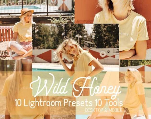 Wild Honey Lightroom Presets 4550767 Free Download