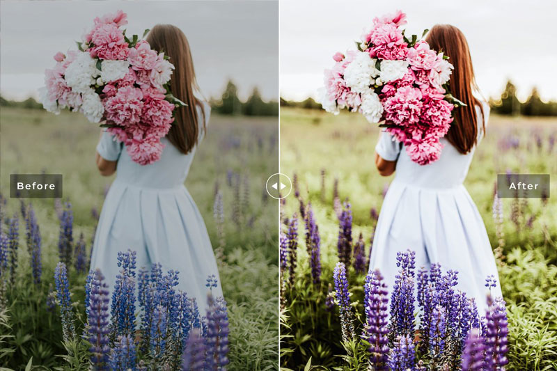 Azalea Lightroom Presets Pack 4742189