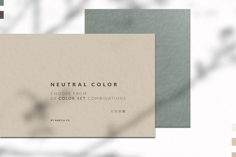 Neutral Color Palette collection 3673540