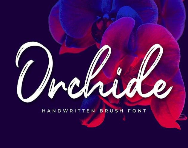 Orchide Handwritten Brush Font