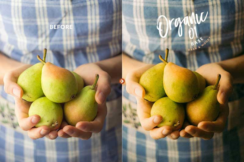 Organic Food Presets for LR 2526 PS 4732921 Psdly
