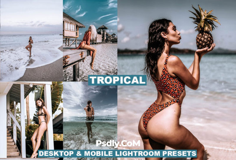 Tropical Mobile and Desktop Presets 4129244