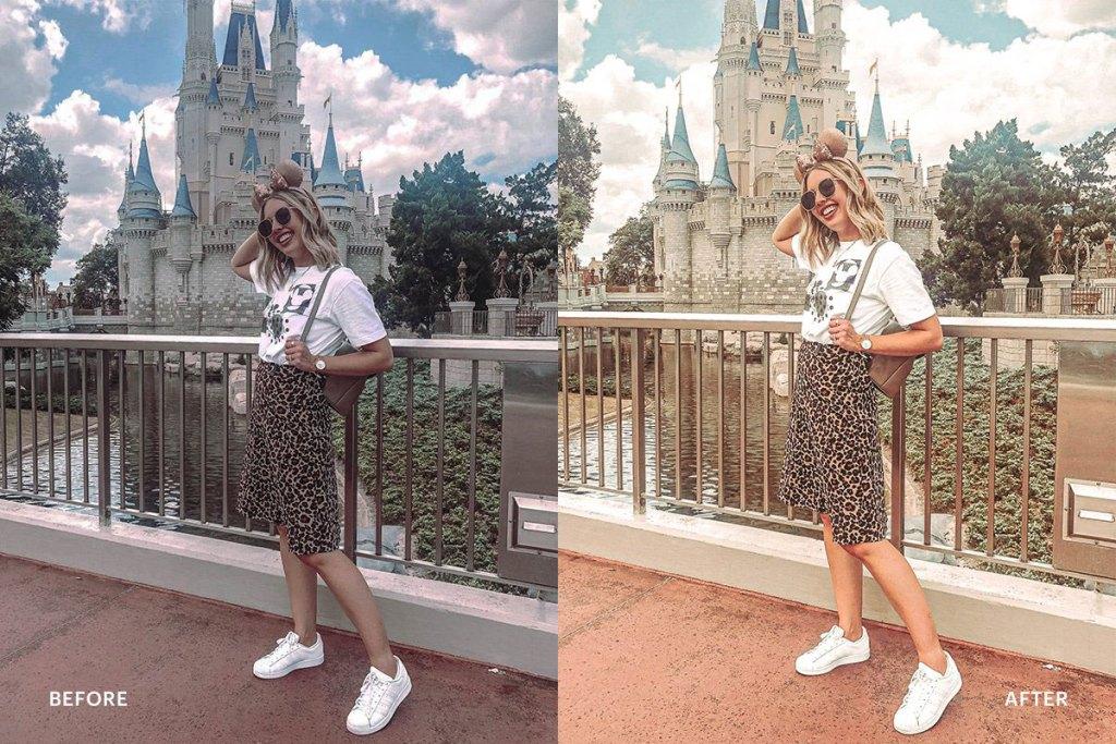 Lightroom Preset Disneyland Princess 4973030.