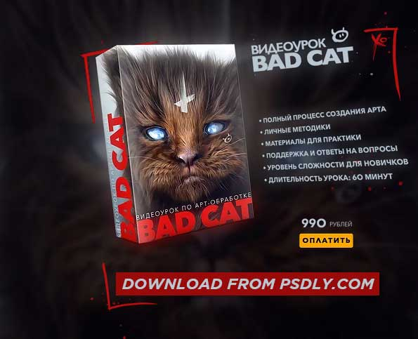 Max Twain Bad Cat Editing Video