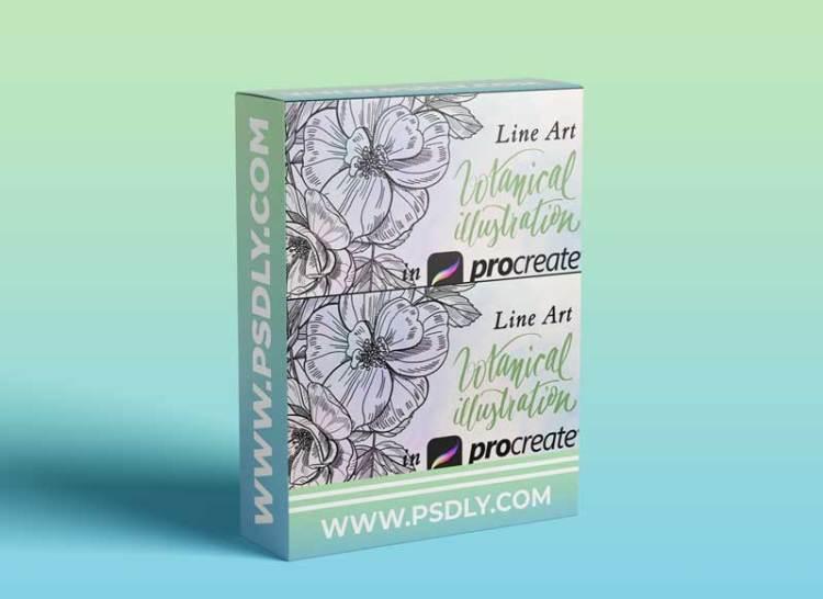 Botanical Illustration - Line Art in Procreate