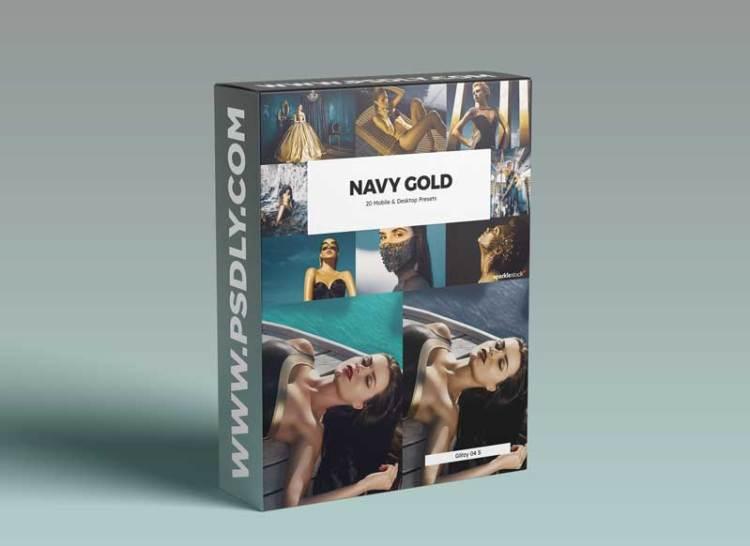 20 Navy Gold Lightroom Presets & LUT
