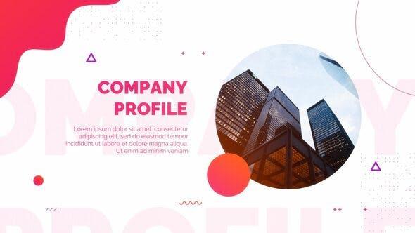 Videohive Company Profile 27034830