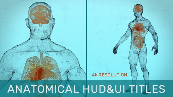 Videohive Anatomical HUD&UI Titles 31538280