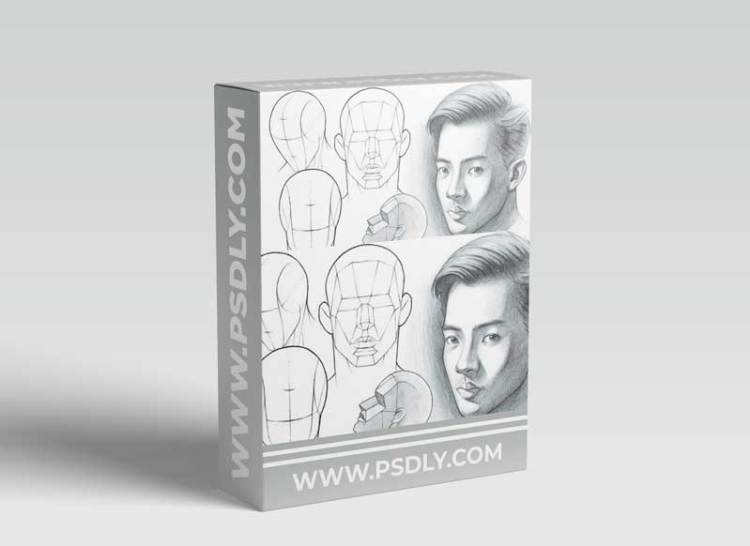 Portrait Drawing Fundamentals Made Simple (Updated)