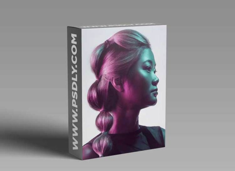 Phlearn Pro - Master Retouching Hair