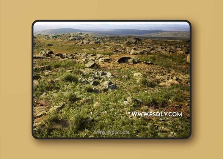 MW Meadow Wetlands Landscape