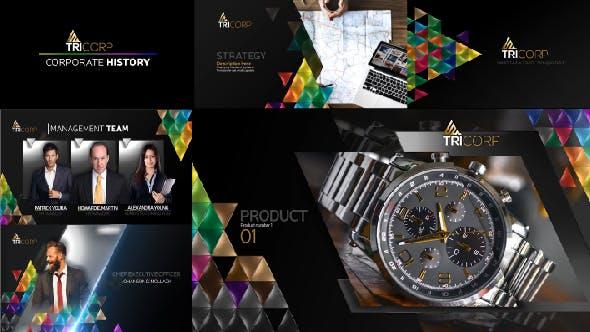 Videohive 3D Triangle Concept Corporate Profile 21482481
