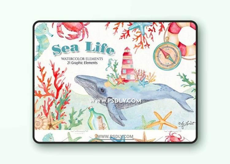 Sea Life Watercolor