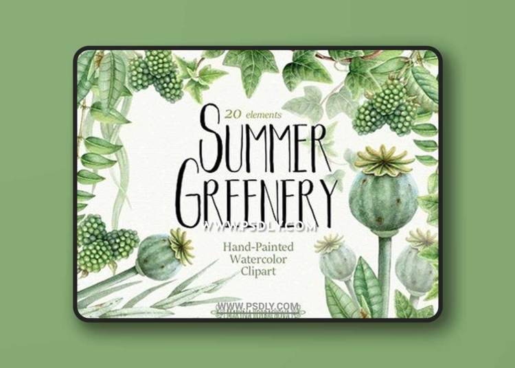 Summer Greenery. Watercolor set