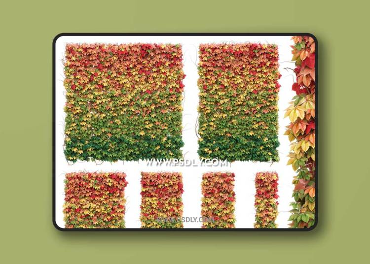 Wall from autumn leaves. Set of 6 models
