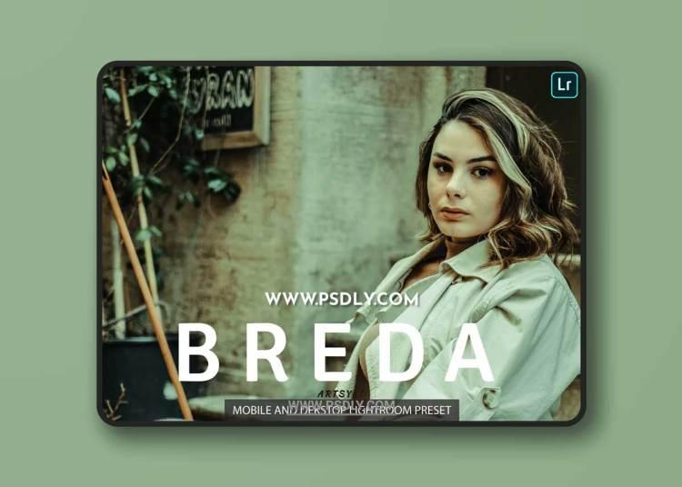 Breda Lightroom Presets Dekstop and Mobile