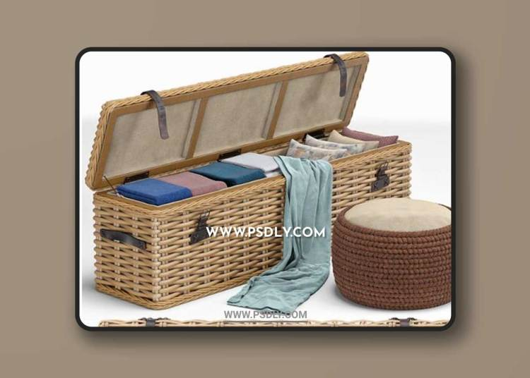 Brenna Leather Accent Woven Rattan Trunk pouf