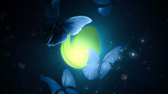 Videohive Butterflies in the Dark 28672335