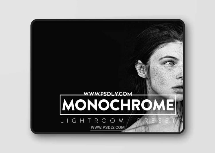 CreativeMarket - 10 Monochrome Lightroom Presets 6523025