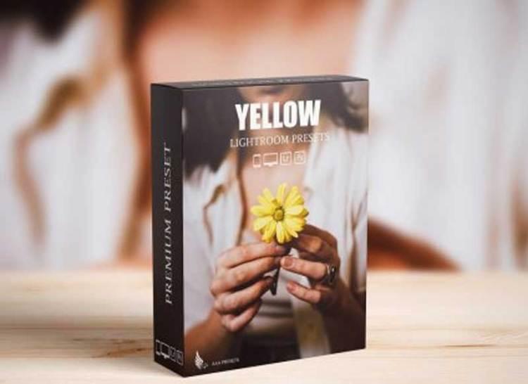 CreativeMarket - Nature Yellow Lightroom Presets 6487605