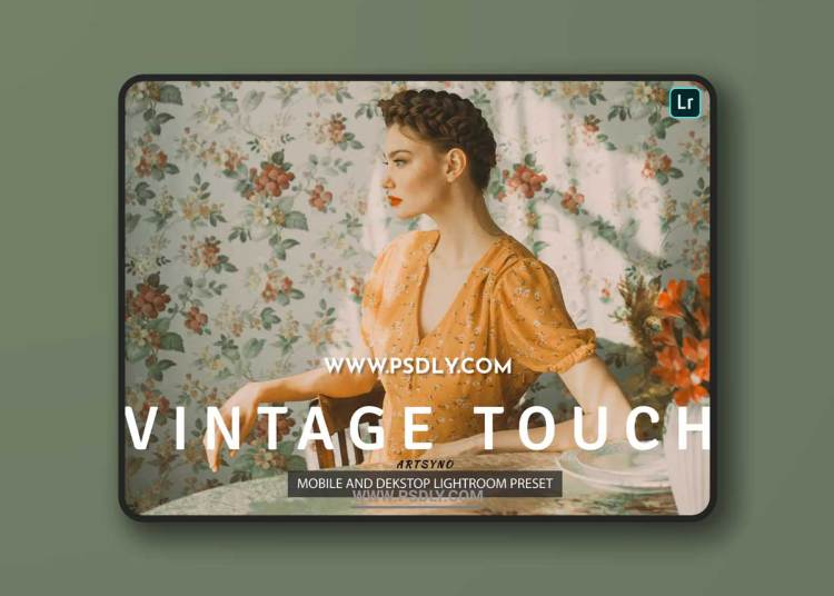 Vintage Touch Lightroom Presets Dekstop and Mobile