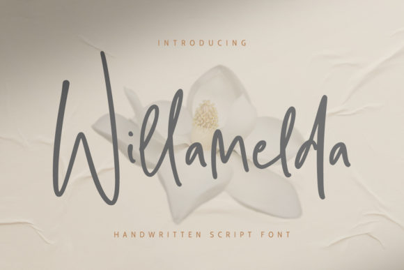 Willamelda Font