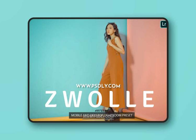 Zwolle Lightroom Presets Dekstop and Mobile