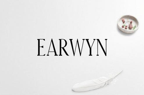 Earwyn Serif 3 Font Family Pack